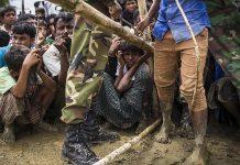 ميانمار: عملية إعادة الروهنغيا من بنغلادش تبدأ خلال أسبوعين