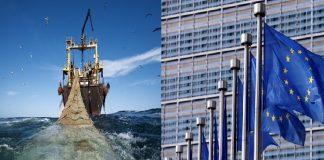 الحكومة المغربية تتخذ موقفا صارما بخصوص اتفاقية الصيد البحري