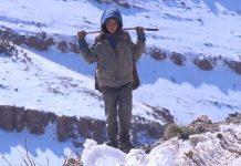 الداخلية تستعرض حصيلة تدخلاتها لفائدة المتضررين من البرد والثلج
