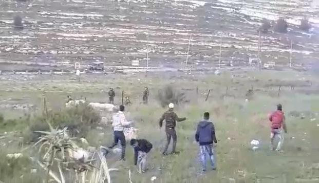 مقتل 7 فلسطينيين وتصيب 250 آخرين من بينهم 50 طفلا