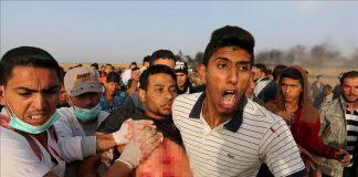 الجيش الصهيوني يواصل استهداف الطواقم الطبية شرقي غزة (وزارة الصحة)
