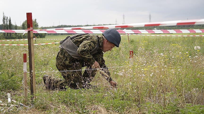 أمستردام وواشنطن تدعوان موسكو لتحمل مسؤولية إسقاط الطائرة الماليزية