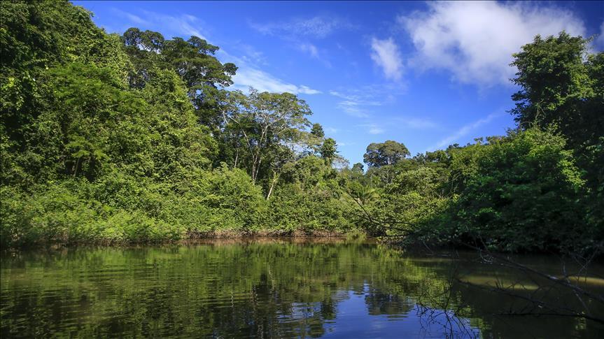 العثور على رجل اختفى 22 عاما في غابات الأمازون