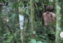 فيديو.. برازيلي يعيش حياة منعزلة منذ 22 سنة دون أي اتصال بالبشر!
