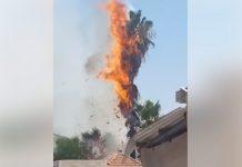 """فيديو: بفعل البالونات الحارقة من غزة.. حريق في مستوطنة """"كريات ملاخي"""""""