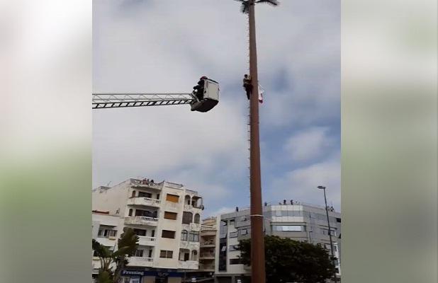 فيديو: محاولة انتحار شاب من فوق عمود كهربائي.. وسلطات الرباط تقنعه بالنزول