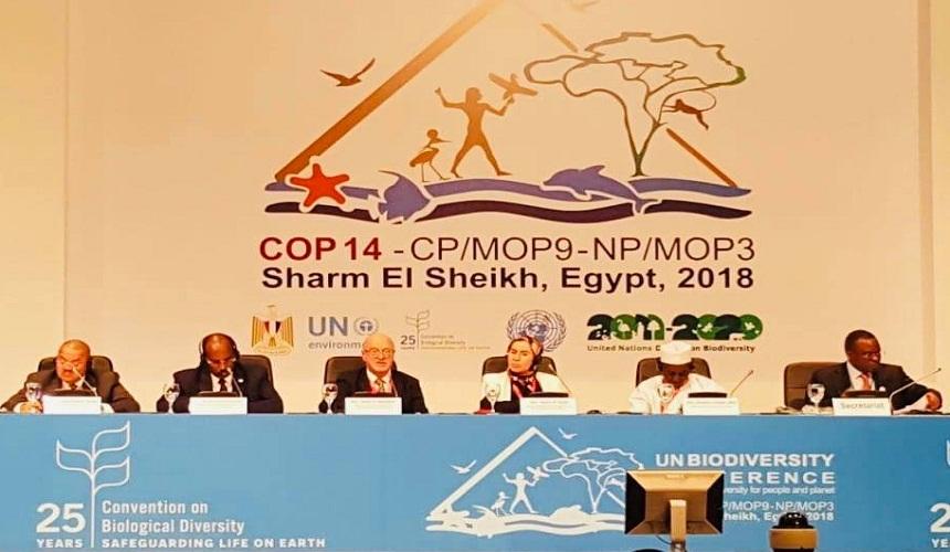 الوافي تؤكد بشرم الشيخ أن مكافحة تدهور الأراضي بإفريقيا تستلزم مشاركة فعالة من طرف جميع الشركاء