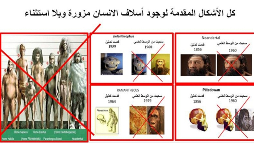 د. بورباب: كل الأشكال المقدمة لوجود أسلاف الإنسان مزورة وبلا استثناء