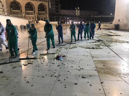بالصور والفيديو.. هجوم سرب من الصراصير على الساحات الخارجية للحرم المكي