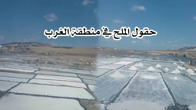 فيديو.. شاهد حقول الملح بمنطقة الغرب بالمغرب