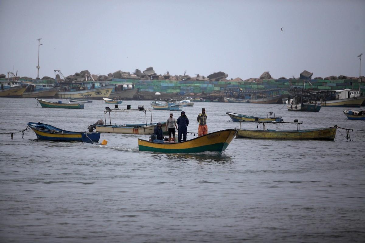 70 بالمائة من سكان غزّة يعيشون حالة انعدام أمن غذائي