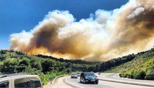 صورة.. الدخان الكثيف بسبب الحريق الغابوي بمنطقة عين الحصن بين طنجة وتطوان