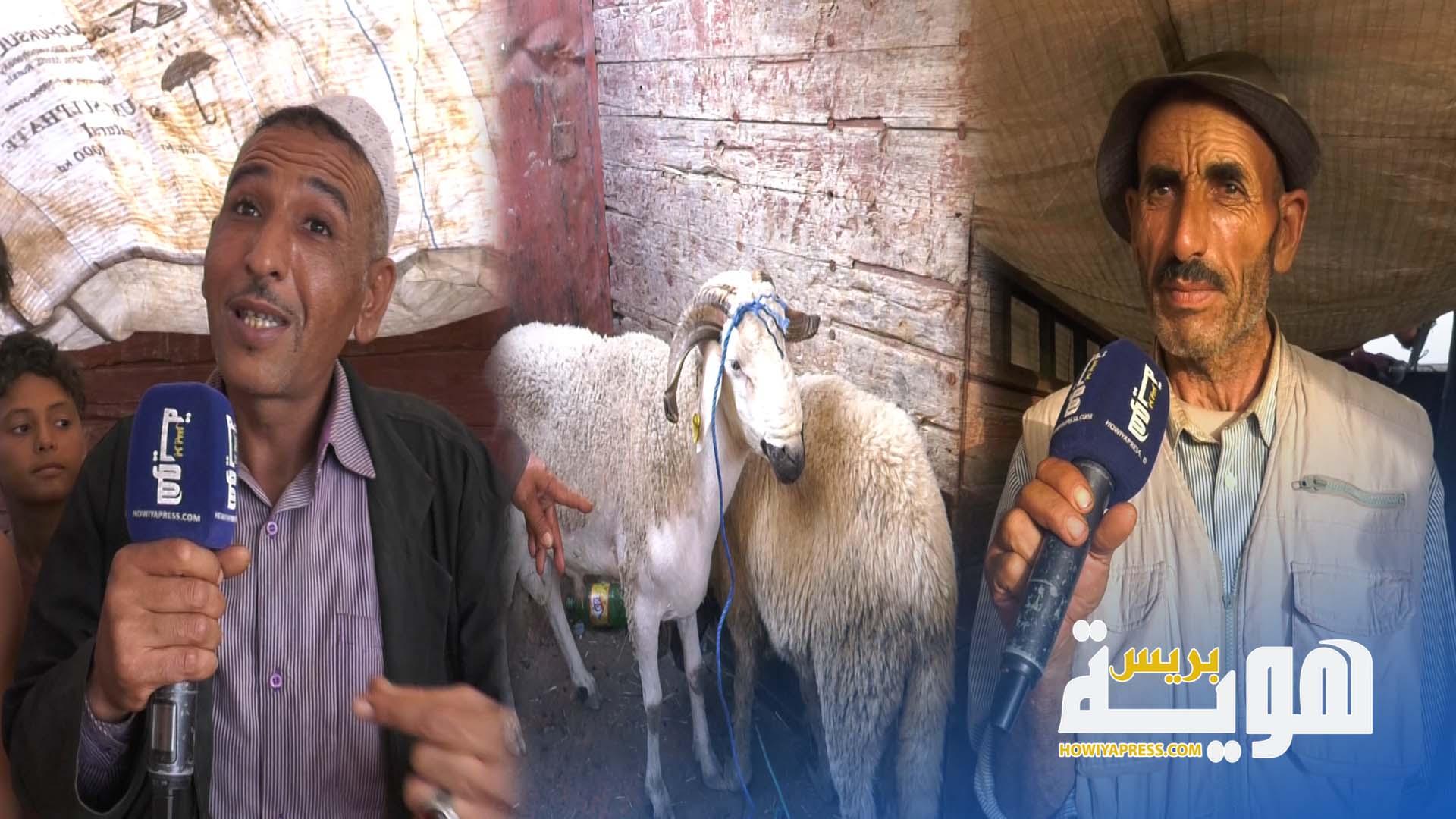 فيديو. سوق الخميس بسلا.. تضارب في أثمنة الأضحية قبل يوم العيد