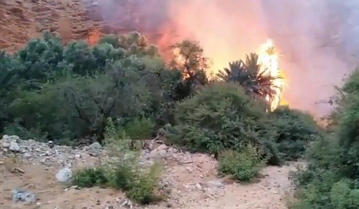 فيديو.. شاهد حريق واحة أيت منصور الذي خلف احتراق 1500 شجرة وسيارة واحدة وأجزاء من مسكنين
