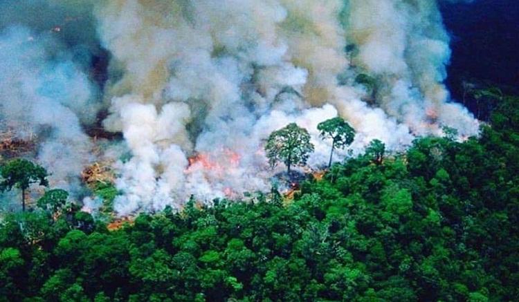 """وقعت سبع دول بأمريكا الجنوبية، مساء الجمعة، """"ميثاق ليتيسيا من أجل الأمازون"""" بهدف الحفاظ على الموارد الطبيعية لأكبر غابة مطيرة في العالم مهددة بالحرائق والتدمير. وقال الرئيس الكولومبي، إيفان دوكي، في حفل توقيع هذه الوثيقة، """" هنا +بليتيسيا+ وقعنا ميثاقا للتنسيق والعمل بانسجام من أجل بلوغ أهداف مشتركة، إن ذلك سيحفزنا لحماية غابة الأمازون من أجل مباشرة عمل حمائي والتقليص من حجم مخاطر كحرائق الغابات"""". وتم التوقيع على هذا الميثاق بليتيسيا، عاصمة جهة الأمازون (جنوب)، من قبل رؤساء كولومبيا، إيفان دوكي، والبيرو، مارتين فيزكارا، وبوليفيا، إيفو موراليس، والإكوادور، لينين مورينو، ونائب رئيس سورينام، مايكل أشوين أدين. كما وقع على الوثيقة المذكورة وزير العلاقات الخارجية البرازيلي، إرنستو أراوجو، ووزير الموارد الطبيعية لغويانا، رافاييل تروتمان. ووفق وسائل إعلام محلية، تهدف قمة ليتيسيا، التي انعقدت بدعوة من الرئيسين الكولومبي والبيروفي، إلى بلورة تدابير لحماية الأمازون، أكبر غابات العالم وأكثرها تنوعا. واستقطبت قمة لتيسيا اهتمام حكومات المنطقة بالحاجة إلى مكافحة تهريب المخدرات واستغلال المناجم بشكل غير شرعي وتدمير الغابات وهي المعضلات التي تعاني منها غابة الأمازون، وفقا لما ذكره الرئيس الكولومبي. من جهته، قال الرئيس البيروفي، مارتين فيزكارا إنه يتعين على الدول المعنية الانتقال إلى مباشرة أعمال ملموسة لأن """"النوايا الحسنة لوحدها لم تعد تكفي، يتعين التحرك من اجل غابة الأمازون وكوكب الأرض"""". ودعا مختلف بلدان العالم إلى المساهمة في حماية غابة الامازون، مطالبا دول المنطقة بالتحلي بالمزيد من المسؤولية على هذا المستوى. وذكر الرئيس الإكوادوري لينين مورينو أن حماية غابة الأمازون تتطلب النهوض بالأوضاع المعيشية للشعوب الأصلية التي تعيش فيها. وقال الرئيس البوليفي إيفو موراليس أن الحكومات ملزمة بالتفكير بشكل معمق في مستقبل غابة الأمازون. وتتكبد هذه الأخيرة، التي يقع الجزء الأكبر منها فوق أراضي البرازيل (60 في المائة)، حرائق واسعة النطاق ومعضلة إزالة الغابات. وتتوزع باقي أجزاء هذه الغابة على دول كولومبيا وبوليفيا والإكوادور وغويانا والبيرو والسورينام وفنزويلا وغويانا الفرنسية. وفي الفترة ما بين فاتح يناير الماضي و05 شتنبر الجاري، اندلع 96596 حريقا بالبرازيل، 4ر51 في المائة منها في غابة الامازون."""