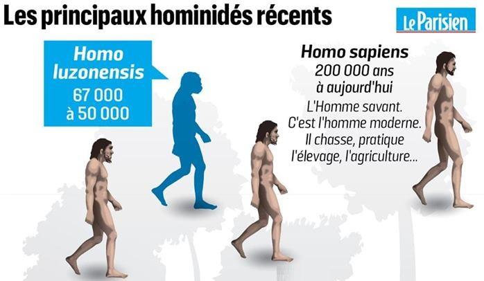 نقد نظرية التطور علميا وفي سطور..