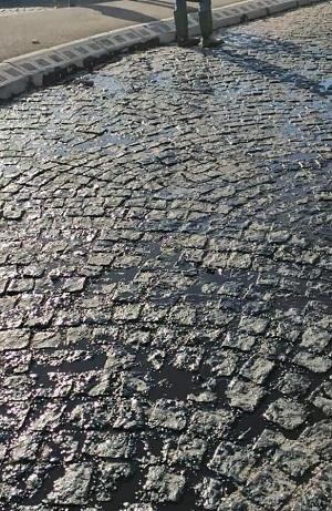 """بالصور.. """"تزفيت"""" حجارة مدار بطريقة عشوائية يثير حنق ساكنة أكادير"""