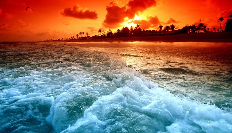 الجلوس أمام البحر 5 دقائق تعادل زيارة طبيب نفسي لمدة أسبوع