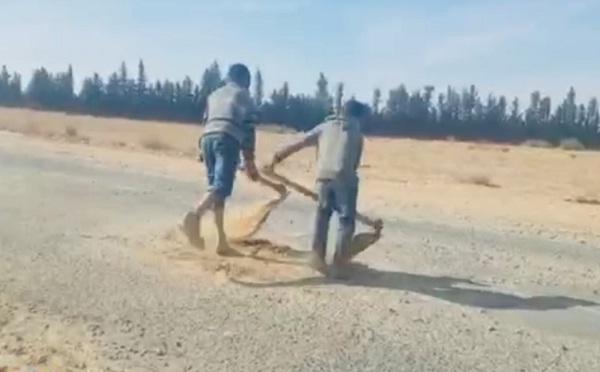 فيديو.. أطفال يتطوعون لملء حفر في الطريق حتى لا تتسبب في حوادث سير