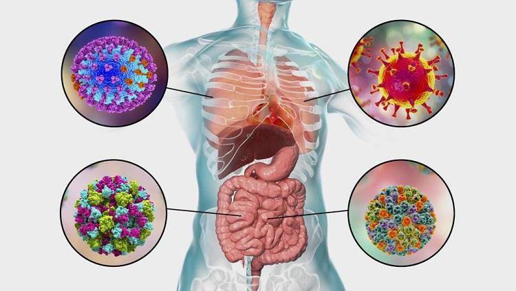 هل فيروس كورونا هو وباء إكس الغامض الذي يقتل 80 مليون إنسان؟