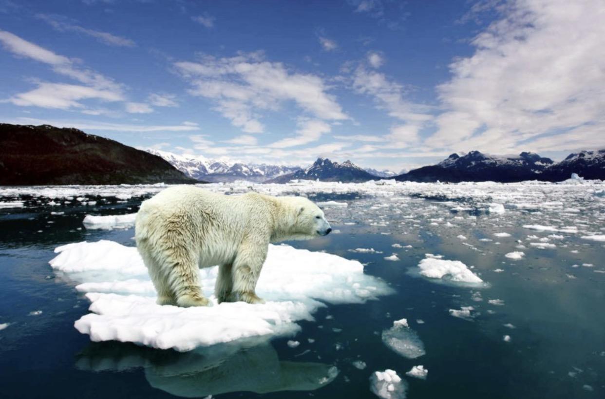 الفيروسات قد تستيقظ بسبب ذوبان الجليد