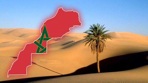 """منظمات مدنية تعتبر بيان المقررة الخاصة المعنية بالصحراء """"مسيسا وغير موثوق به"""""""