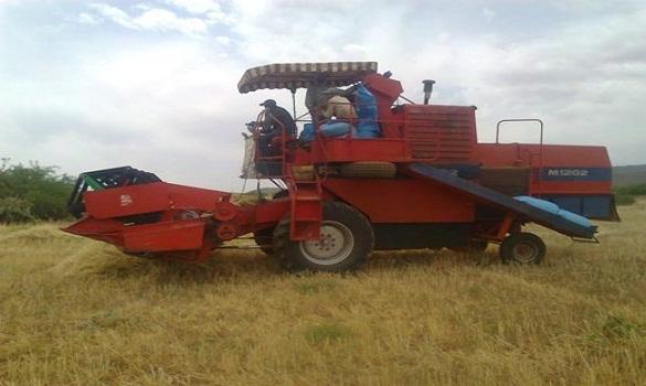 انطلاق عملية الحصاد بجهة تادلة أزيلال (فيديو)