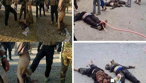 شهادات مثيرة لسنة العراق حول جرائم الإيزيديين بعد خيانة «داعش» لهم