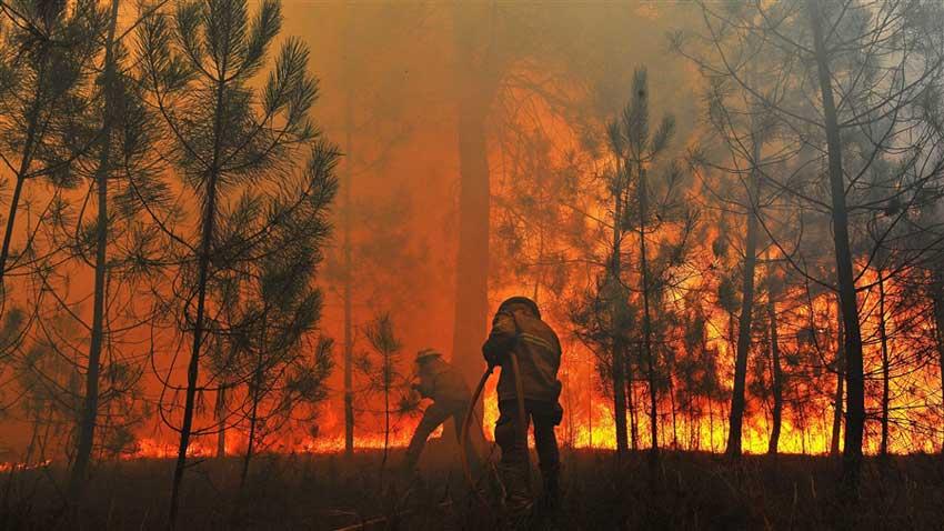 أستراليا.. حرائق الغابات تدمر 30 منزلا و100 ألف هكتار