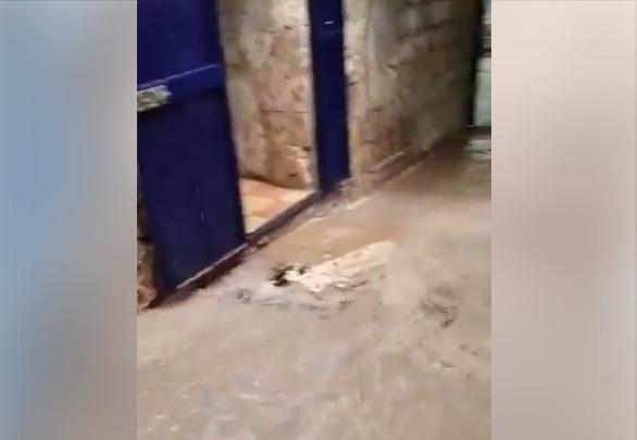 شاهد: سيول جارفة في البلدة القديمة بمدينة القدس المحتلة اليوم