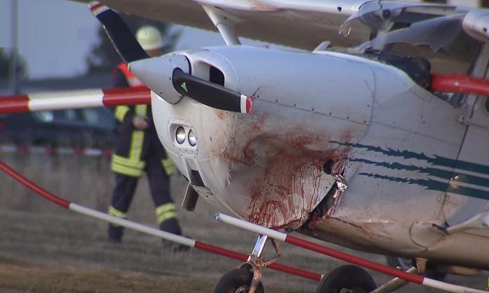 فيديو.. 3 قتلى في سقوط طائرة وسط حشد بألمانيا