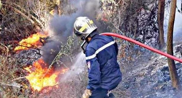 آخر المستجدات حول حريق غابة عشاشة تاسيفت بشفشاون