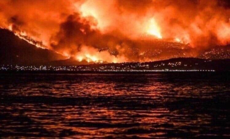 #لبنان_يحترق.. حرائق غير مسبوقة في لبنان وأضرار كارثية